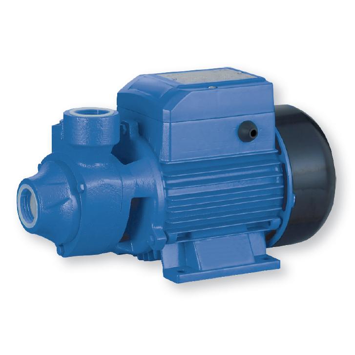 Povrchové čerpadlo BLUE LINE PKM80-1 (BLUE LINE PKM80-1, objemové čerpadlo, CECA0471)